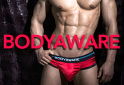 hollywood men underwear
