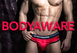 hollywood men underwear